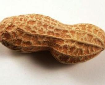omeopatia-salute-allergia-arachidi-uomini