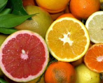 omeopatia-salute-agrumi-ricchi-vitamina-c