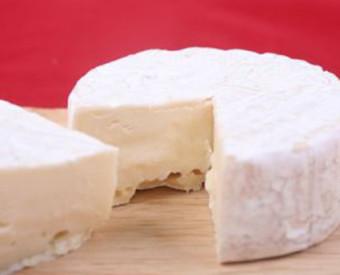 omeopatia-salute-formaggio-crea-dipendenza
