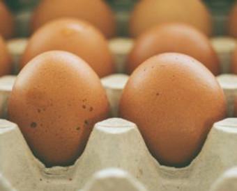 omeopatia-salute-uova-calorie-e-proteine