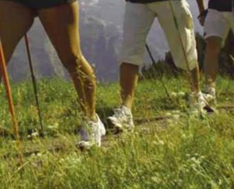 omeopatia-salute-movimento