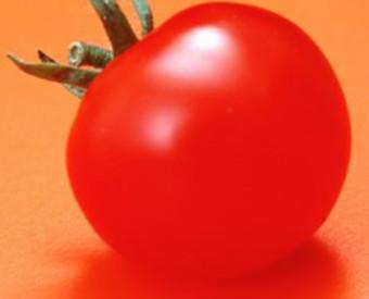 omeopatia-salute-pelle-al-sole
