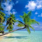 maldive-1024x768