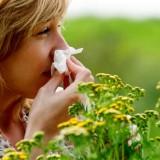 allergia-2